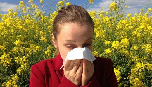 【ペット】犬を飼ったら子供がアレルギー発症|対策は?
