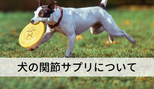 犬の関節サプリに効果はある?おすすめ商品は?